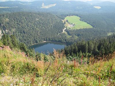 Blick zum Feldsee
