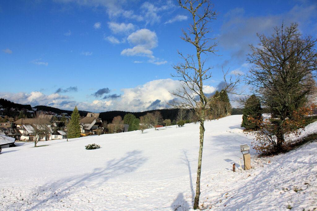 Schnee Schwarzwald Aktuell