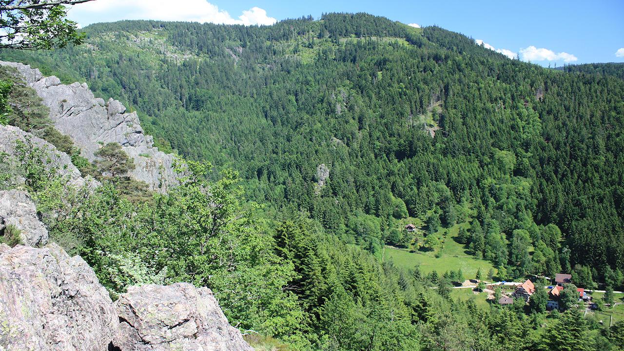 Klettersteig Schwarzwald : Klettersteigkurs für einsteiger und anfänger