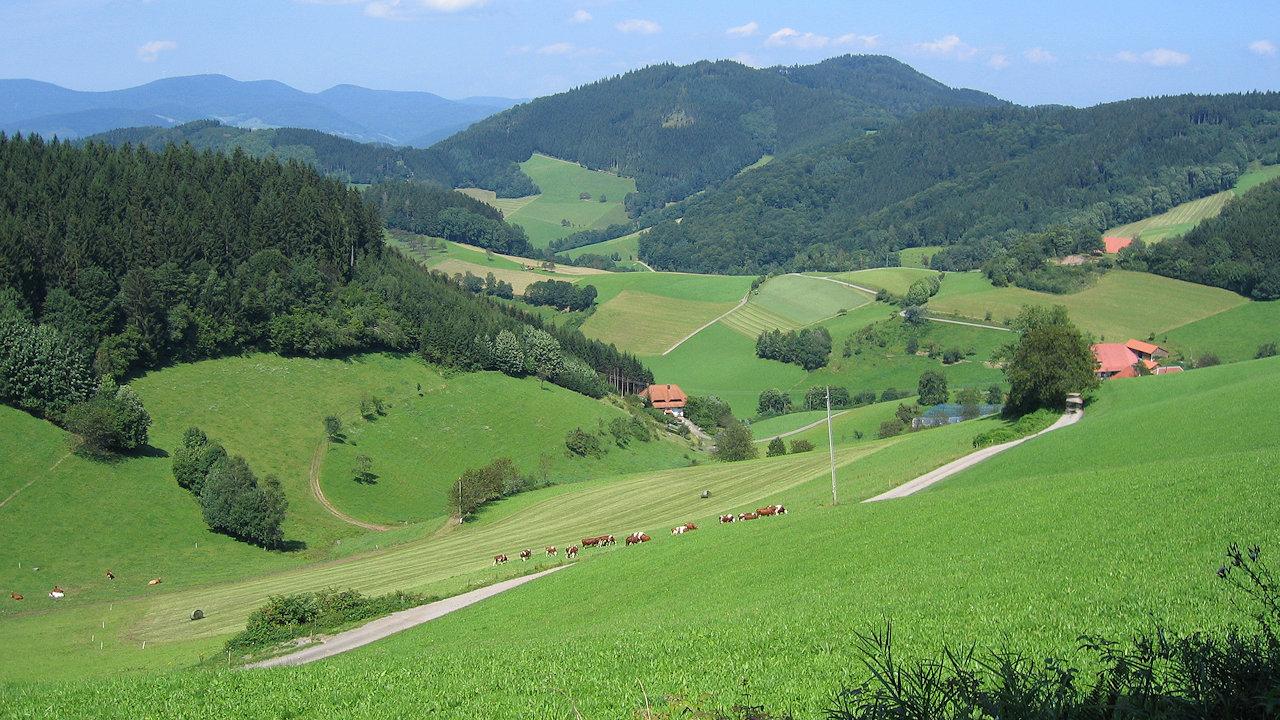 Landschaften im Schwarzwald - Bilder vom Titisee ...